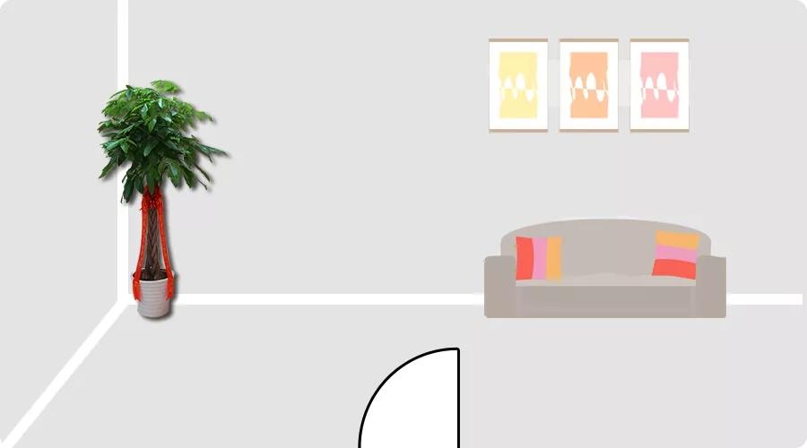 家中客厅植物摆放风水禁忌,客厅植物怎么摆放能招财?