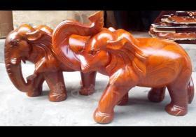 大象摆放位置有哪些讲究 大象摆件公母怎么分?