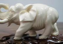 大象的风水用品如何来用?